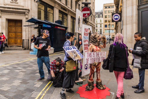 PETA Protesters March Topless In NYC Against Canada Goose